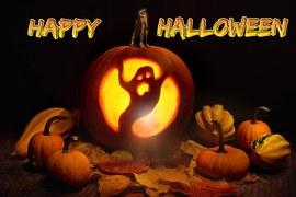 pumpkin-1014971__180